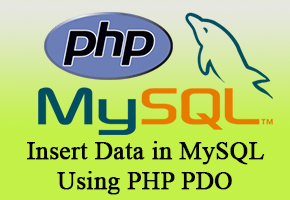 Insert Data in MySQL Using PHP PDO